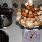 Change it up: use different variety of mushrooms. Crimini and prairie mushrooms are used for this recipe. Any mushrooms would work.