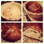A close up of how the boule evolved from steps 9 to 10 to everyone's bellies!